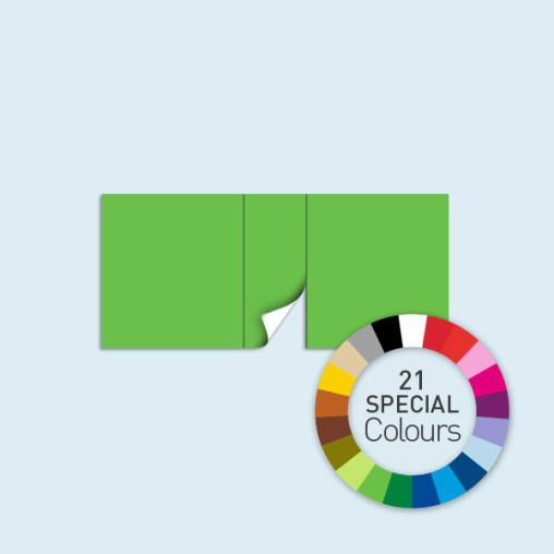 Wand mit 1 Tür mittig 450 x 205 cm Basic/Select, in 21 Sonderfarben erhältlich